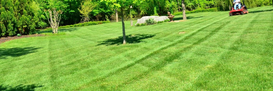 Your lawn and landscape<br /> the way that it should be