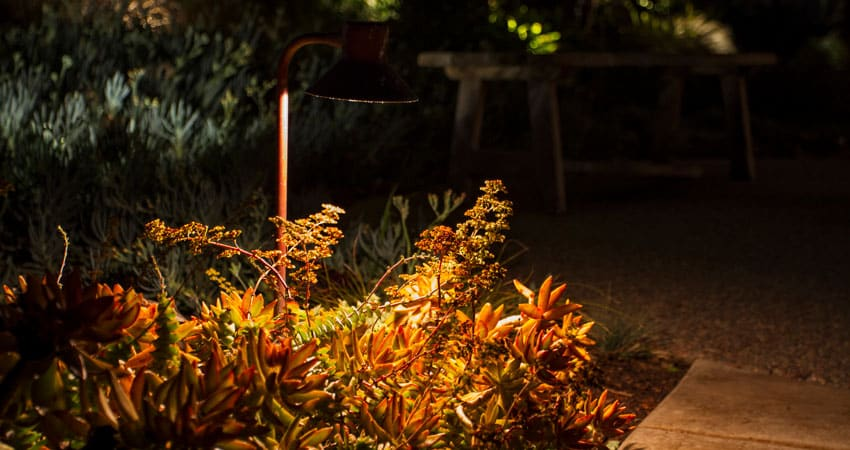 Down lighting in garden